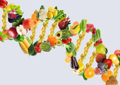 Nutrigenomics Pic