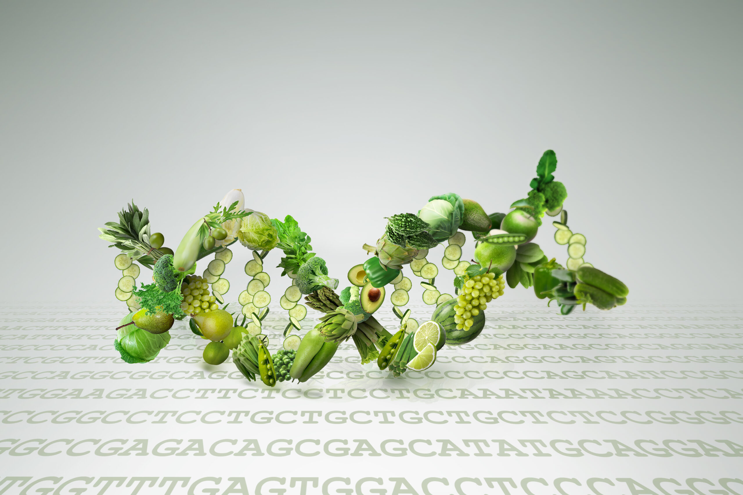 Nutrition Genetics And Nutrigenomics Science Concept Of Dna Helix Made Of Vegetables Refers To Genome Editing